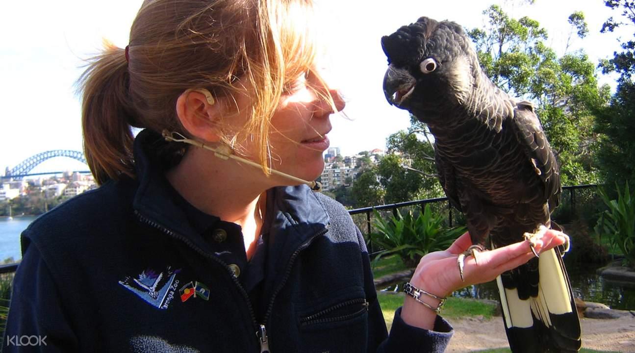 taronga sydney zoo